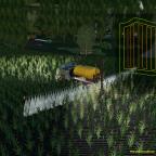 Viel Unkraut auf Feld 3